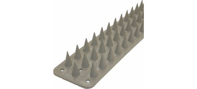 Squirrel Deterrent Plastic Spikes to buy by the Metre